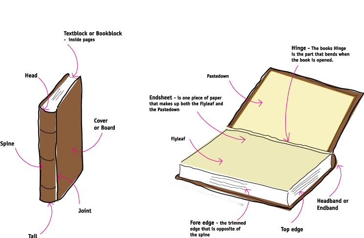 Diagram of Anatomy of a Book (depicts spine, head, cover, board, joint, tail, pastedown, flyleaf, end sheet, fore edge, top edge, headband and hinge).